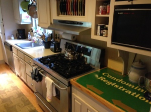 Here's the kitchen before we ripped out the sink and counters.  I am going to miss the old condo registration sign countertop - just a little.